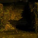 photo of stone stairs