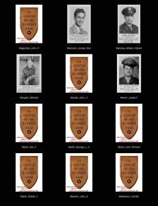 wii role of honor (LA-McC)