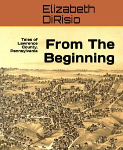 book cover from the beginning by dirisio